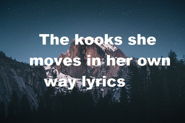 The kooks she moves in her own way lyrics
