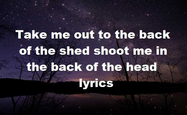 Take me out to the back of the shed shoot me in the back of the head lyrics