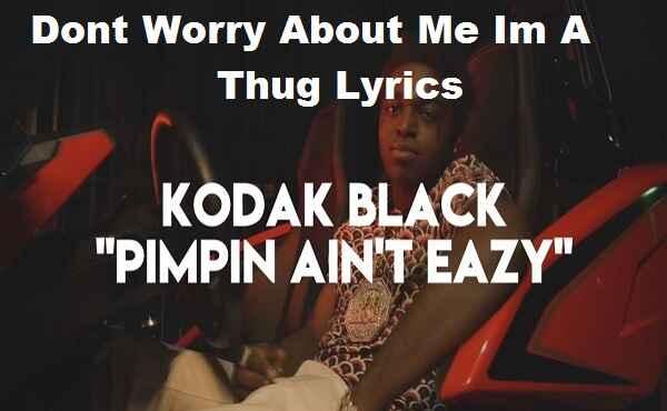Dont Worry About Me Im A Thug Lyrics