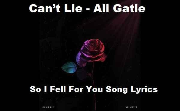 So I Fell For You Song Lyrics