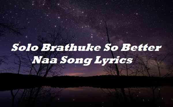 Solo Brathuke So Better Naa Song Lyrics