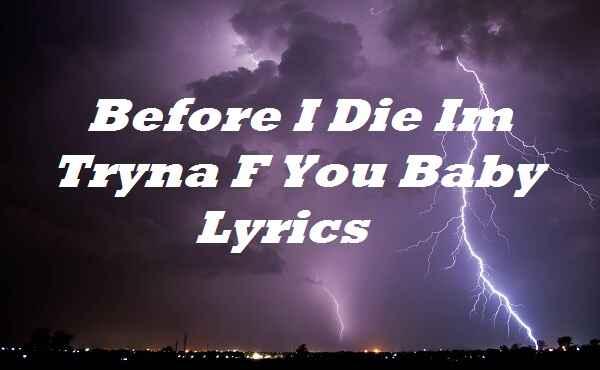 Before I Die Im Tryna F You Baby Lyrics