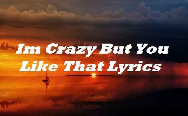 Im Crazy But You Like That Lyrics