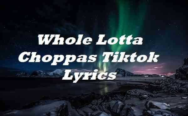 Whole Lotta Choppas Tiktok Lyrics