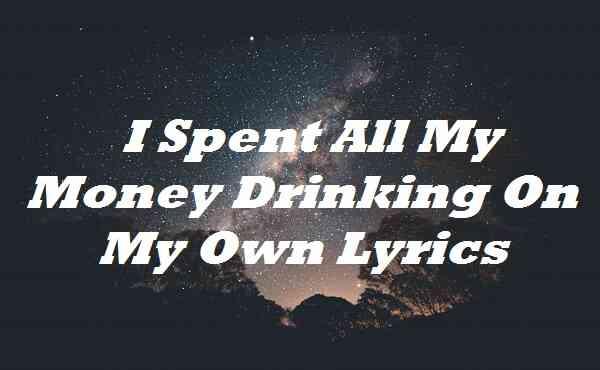 I Spent All My Money Drinking On My Own Lyrics