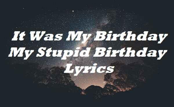 It Was My Birthday My Stupid Birthday Lyrics