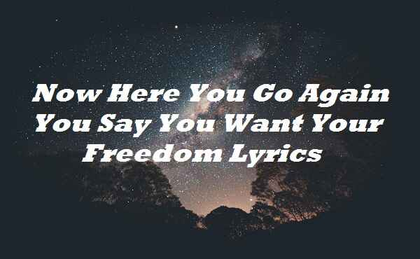 Now Here You Go Again You Say You Want Your Freedom Lyrics
