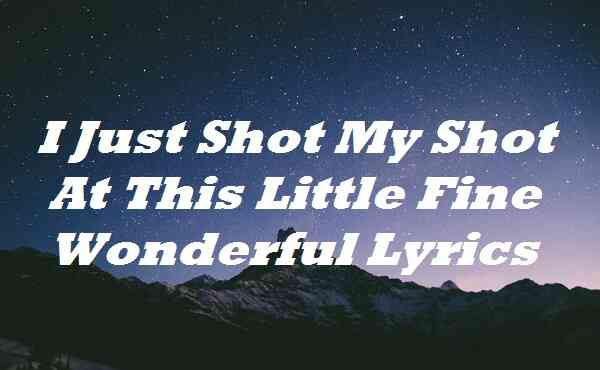 I Just Shot My Shot At This Little Fine Wonderful Lyrics