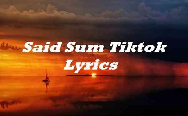 Said Sum Tiktok Lyrics
