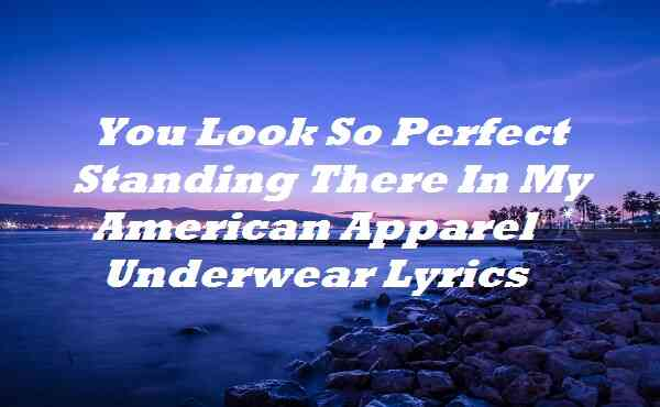 You Look So Perfect Standing There In My American Apparel Underwear Lyrics