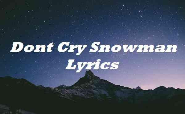 Dont Cry Snowman Lyrics