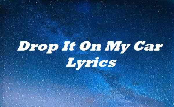 Drop It On My Car Lyrics