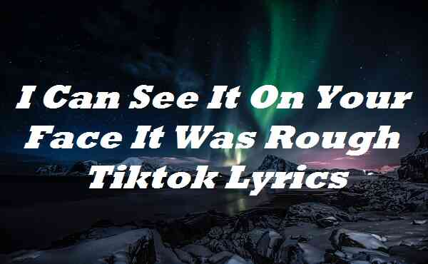 I Can See It On Your Face It Was Rough Tiktok Lyrics