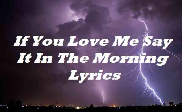If You Love Me Say It In The Morning Lyrics