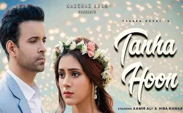 Tanha Hoon Lyrics Aankh Meri Aasuon Se Namm Hai Lyrics