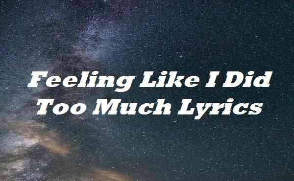 Feeling Like I Did Too Much Lyrics