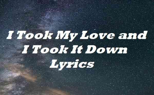 I Took My Love and I Took It Down Lyrics