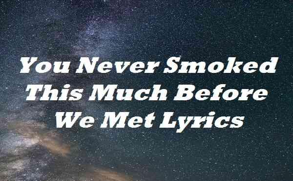 You Never Smoked This Much Before We Met Lyrics