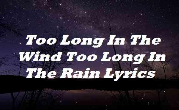 Too Long In The Wind Too Long In The Rain Lyrics