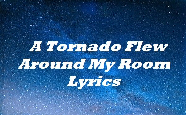 A Tornado Flew Around My Room Lyrics