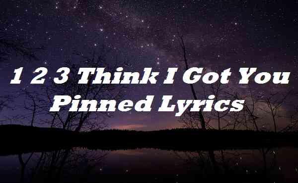 1 2 3 Think I Got You Pinned Lyrics