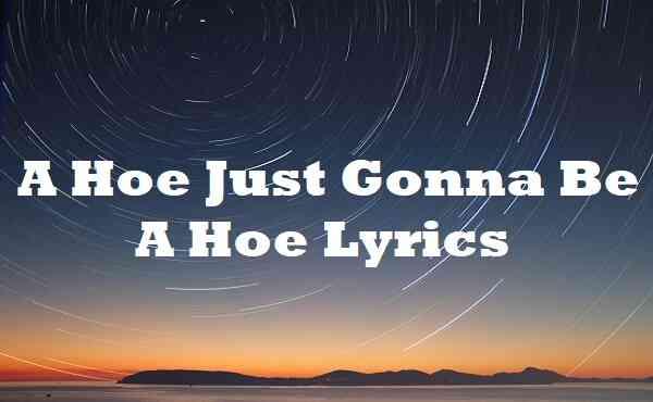 A Hoe Just Gonna Be a Hoe Lyrics