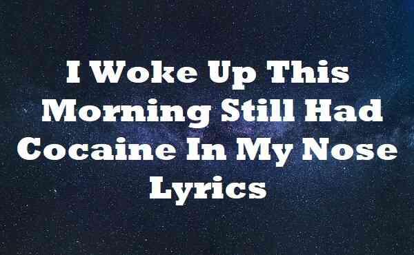 I Woke Up This Morning Still Had Cocaine In My Nose Lyrics
