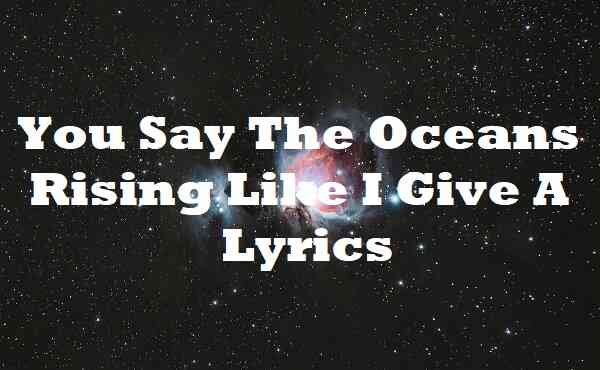 You Say The Oceans Rising Like I Give A Lyrics