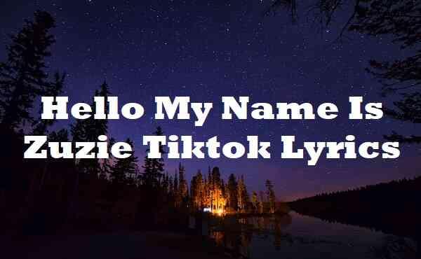 Hello My Name Is Zuzie Tiktok Lyrics