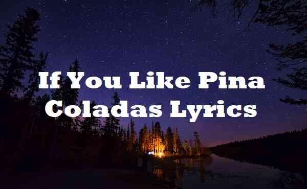 If You Like Pina Coladas Lyrics