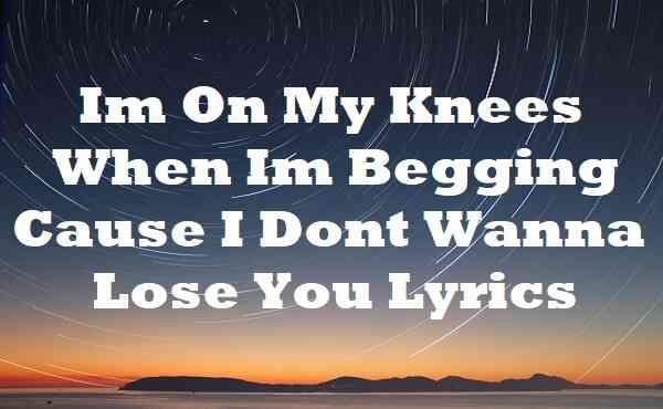 Im On My Knees When Im Begging Cause I Dont Wanna Lose You Lyrics