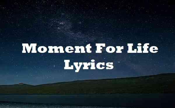 Moment For Life Lyrics
