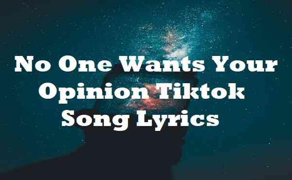 No One Wants Your Opinion Tiktok Song Lyrics